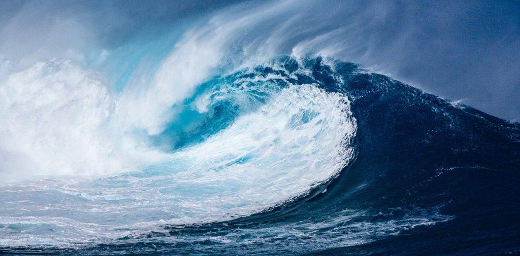 OFERTA DE EMPLEO: investigador postdoctoral para la redacción del Plan de Investigación de SEA-EU